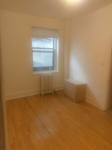 Big Room in Downtown apartment; furnished; sunny, Atwater metro