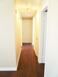 1-bedroom apartment with Internet included