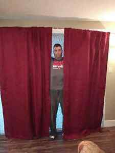 Raspberry curtains (4'x8') with hardware