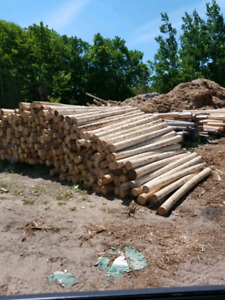 High quality Cedar posts ( Wholesale prices)