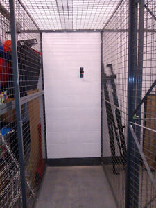 Locker available for rent for residents of 28 Ted Rogers Way