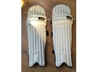Youth woodworm cricket pads