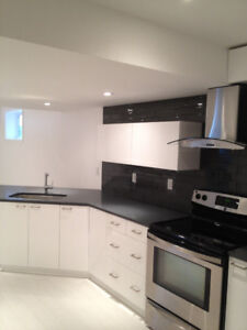 ALL INCLUSIVE Executive Basement Apartment for rent in Orleans