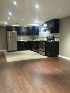Fully Renovated 2 bedroom lower level  apartment !!