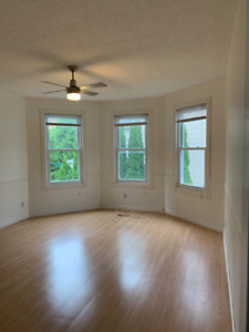 Large, bright 1 bedroom apartment for rent