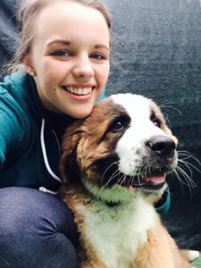 Dog Walking Services in Hanover & Surrounding Areas