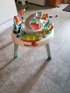 Fisher price 2 in 1 saucer