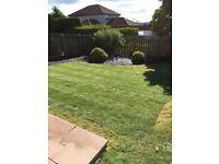 SR Garden & Property Maintenance Services