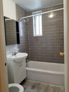 4 1/2 apartment for rent in NDG
