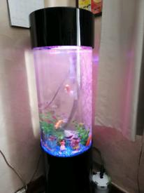 Cylinder Fish Tank