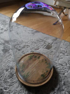 Large Cloche - glass dome /wood base