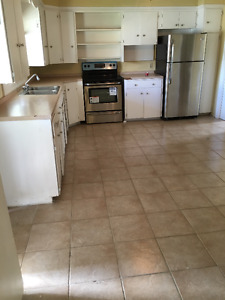 House available for rent immediately in Palmerston (near TG)