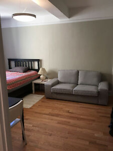 Furnished Downtown Regina Bachelor Available Now!