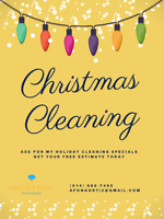 Christmas Home Cleaning - PROMOTION
