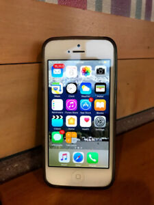 Will buy your Apple iPhone 5s in good/great working condition