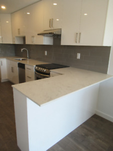 MOODY PARK - renovated - DISHWASHER - modern - DISHWASHER -clean