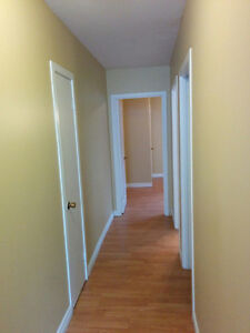 One Bedroom Apartment Near Village Mall