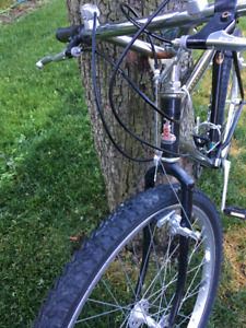 Raleigh Elkhorn Mountain Bike for sale