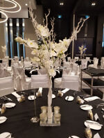 Wedding Decor Specials Nov Dec Jan Feb Mar NOW