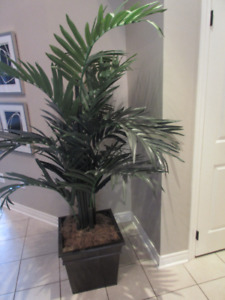 Artificial fake palm tree