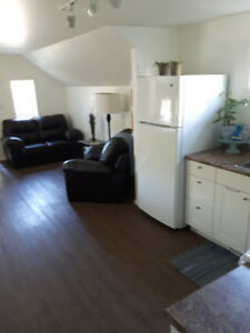 Pet Friendly Apt Suite in the Heart of Elora for Rent.