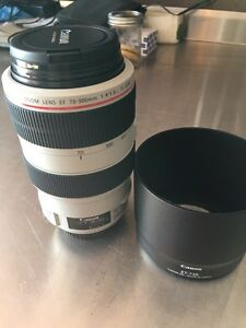 Canon EF70-300 L series zoom lens