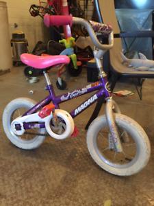 Girls Bicycle 12 inch wheels, very good shape