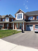 2 YR OLD SEMI DETACHED FOR LEASE  IN MISS. HEARTLAND/SQ1