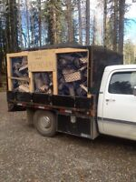 Buy this load today! Firewood,Dry,clean,split spruce.1 full cord