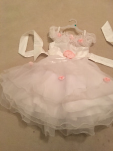 flower girl / Special occasion  dress