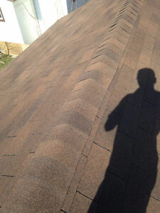 Painting, Landscaping, Junk removal, Shed builds, Roofing. Sarnia Sarnia Area image 5