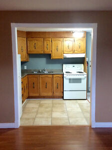 Two Bedroom Basement Apartment, in The Goulds.