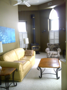 Fully furnished executive apartments available by the month.