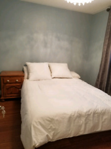 Single Room for rent in clean, quiet house. Available now