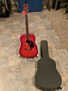 Tradition Guitar, stand, and Hard Case