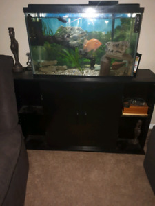 35 gallon fish tank with stand and accessories