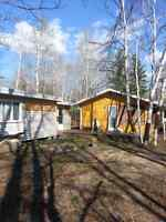 Cabin and guest house for sale