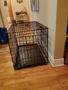 cage a chien parfaite état