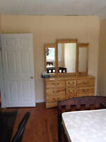 Newly renovated, all inclusive Bedrooms available (MohawkCollege