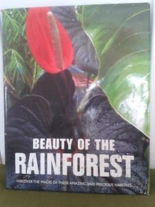 Beauty of the rainforest