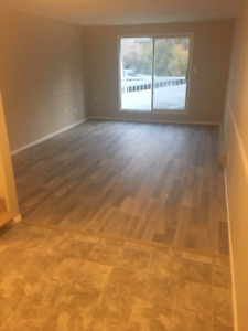 1 Bed 1 Bath Apartment newly renovated in Penticton