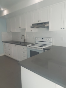 Newly renovated 3 BD with balcony won't last long