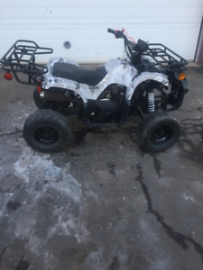 TAOTAO 110cc MINI ATV