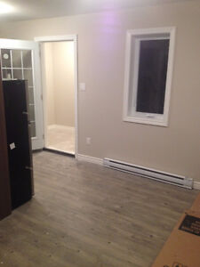 Nice, newly finished bachelor in heart of Hintonburg