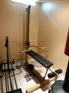 Nordic flex gold gym machine. 50 bucks