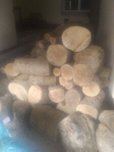 Firewood - dry, stored under cover over winter