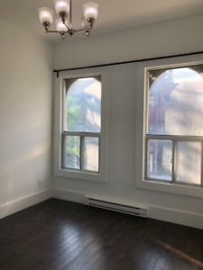 Newly renovated 1 bed Apartment