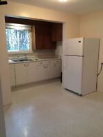 "A place to call ""Home"" - 2 bedroom Apartment - Elmira"