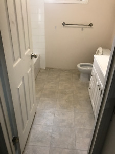 coral springs basement for rent