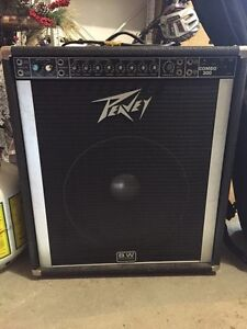 Bass/Guitar Amp